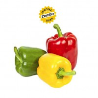 Capsicum (G+Y+R) 250 gm Each